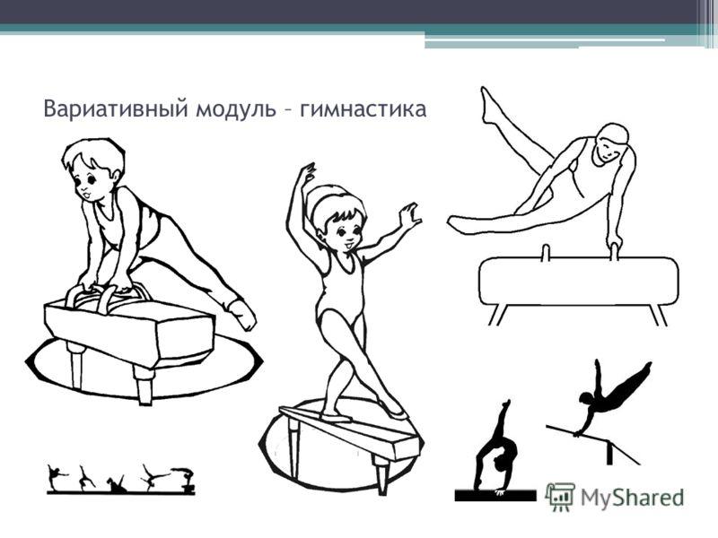 Вариативный модуль – гимнастика