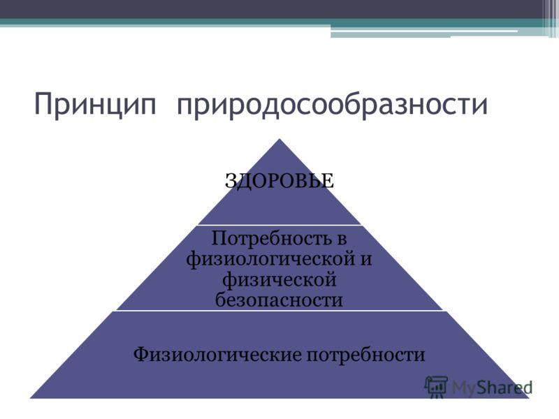 Принцип природосообразности ЗДОРОВЬЕ Потребность в физиологической и физической безопасности Физиологические потребности