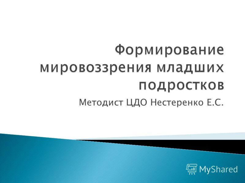 Методист ЦДО Нестеренко Е.С.