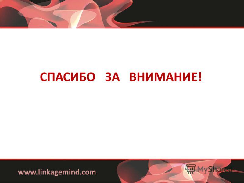 www.linkagemind.com СПАСИБО ЗА ВНИМАНИЕ!