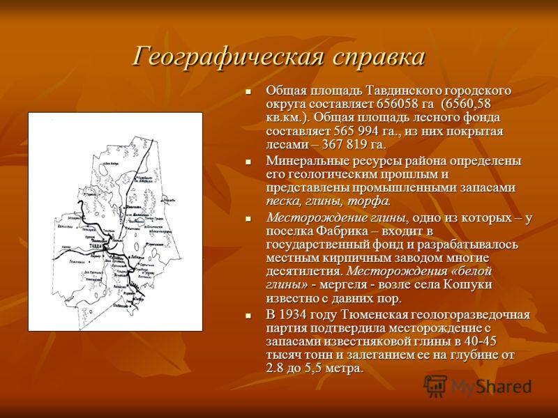 Географическая справка Общая площадь Тавдинского городского округа составляет 656058 га (6560,58 кв.км.). Общая площадь лесного фонда составляет 565 994 га., из них покрытая лесами – 367 819 га. Общая площадь Тавдинского городского округа составляет