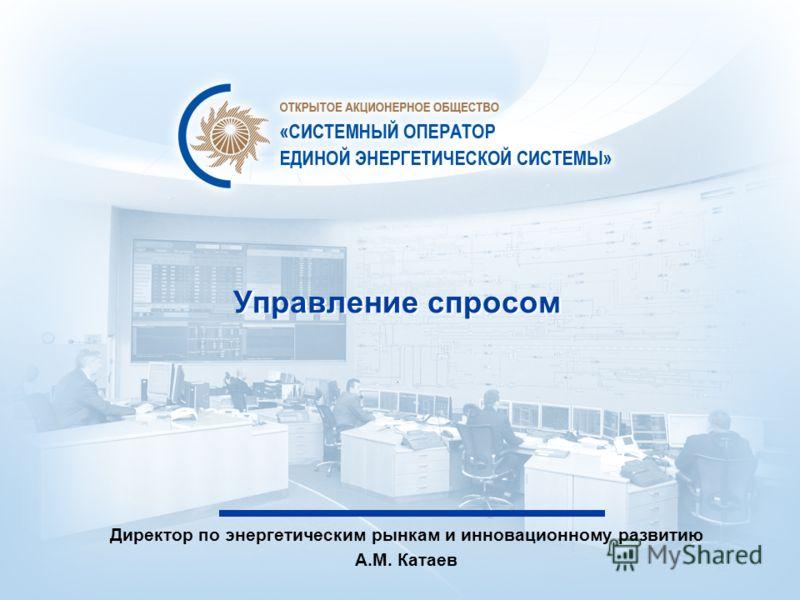 Управление спросом Директор по энергетическим рынкам и инновационному развитию А.М. Катаев