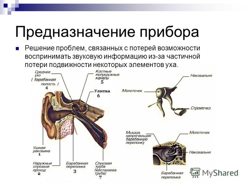 Предназначение прибора Решение проблем, связанных с потерей возможности воспринимать звуковую информацию из-за частичной потери подвижности некоторых элементов уха.