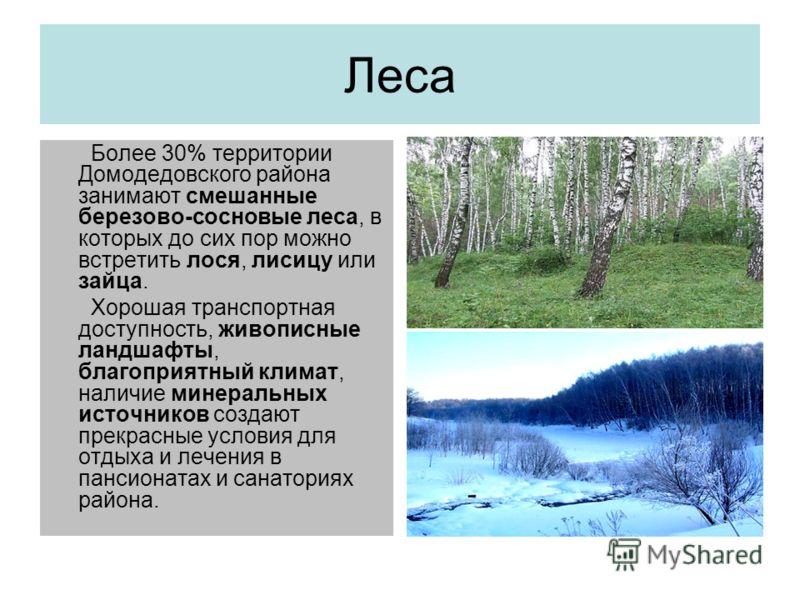 Леса Более 30% территории Домодедовского района занимают смешанные березово-сосновые леса, в которых до сих пор можно встретить лося, лисицу или зайца. Хорошая транспортная доступность, живописные ландшафты, благоприятный климат, наличие минеральных