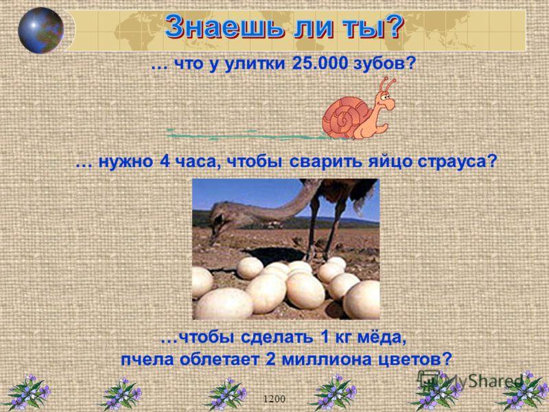 … что у улитки 25.000 зубов? … нужно 4 часа, чтобы сварить яйцо страуса? …чтобы сделать 1 кг мёда, пчела облетает 2 миллиона цветов?