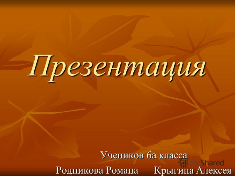 Презентация Учеников 6а класса Родникова Романа Крыгина Алексея