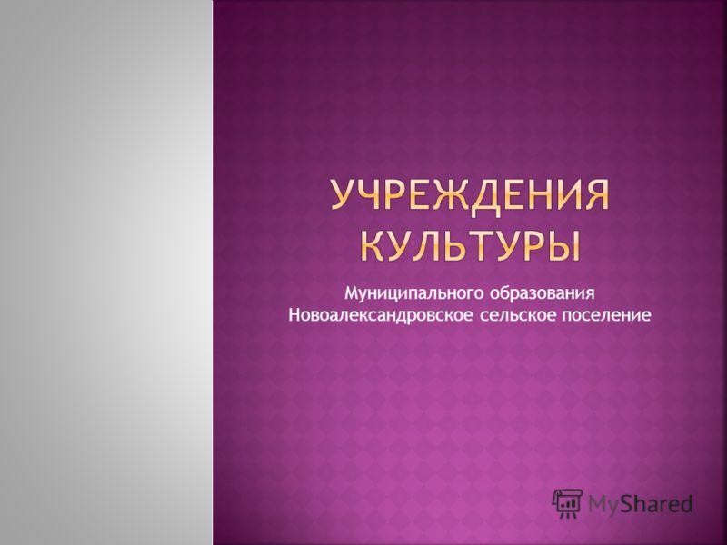 Муниципального образования Новоалександровское сельское поселение