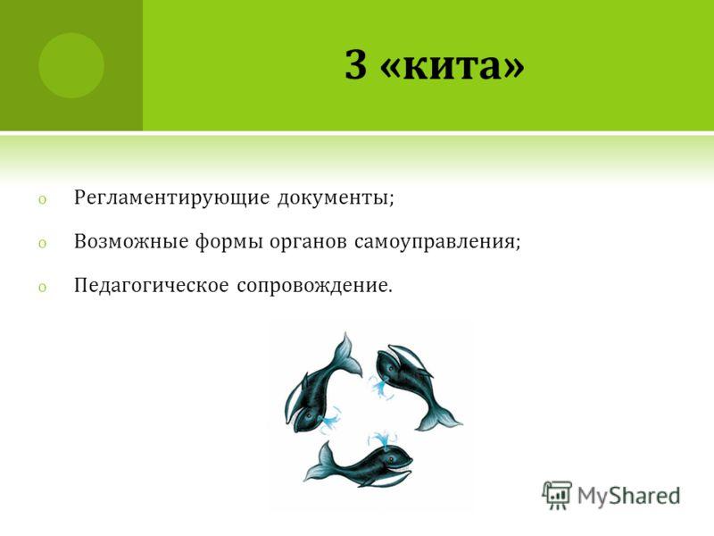 3 «кита» o Регламентирующие документы; o Возможные формы органов самоуправления; o Педагогическое сопровождение.