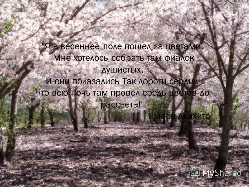 Я в весеннее поле пошел за цветами, Мне хотелось собрать там фиалок душистых, И они показались Так дороги сердцу, Что всю ночь там провел средь цветов до рассвета! Ямабэ Акахито