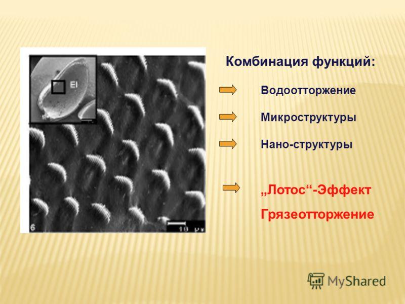 Нано-структуры Комбинация функций: Водоотторжение Микроструктуры Лотос-Эффект Грязеотторжение
