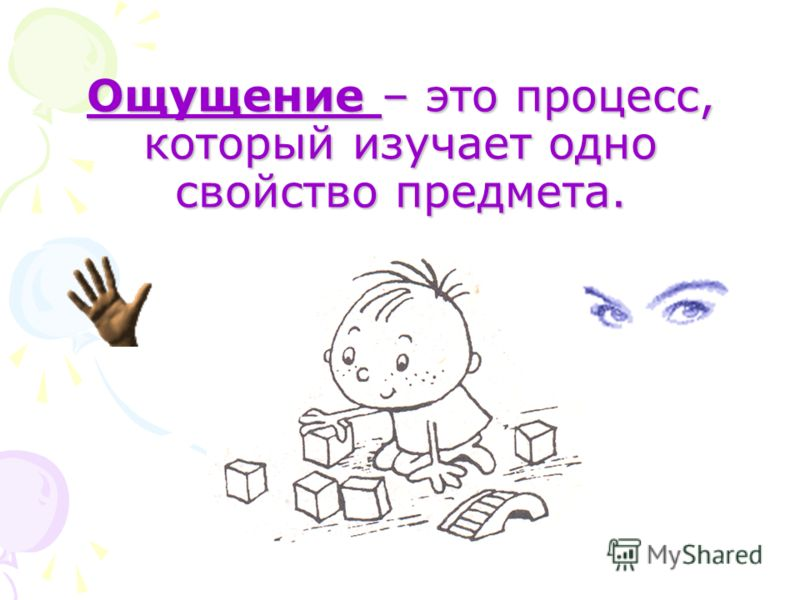 Ощущение – это процесс, который изучает одно свойство предмета.