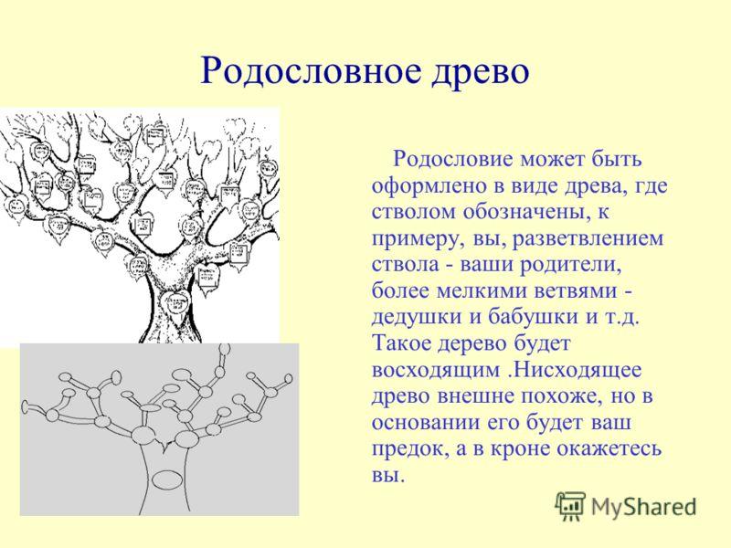 Родословное древо Родословие может быть оформлено в виде древа, где стволом обозначены, к примеру, вы, разветвлением ствола - ваши родители, более мелкими ветвями - дедушки и бабушки и т.д. Такое дерево будет восходящим.Нисходящее древо внешне похоже