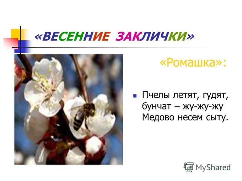 «ВЕСЕННИЕ ЗАКЛИЧКИ» «Ромашка»: Пчелы летят, гудят, бунчат – жу-жу-жу Медово несем сыту.
