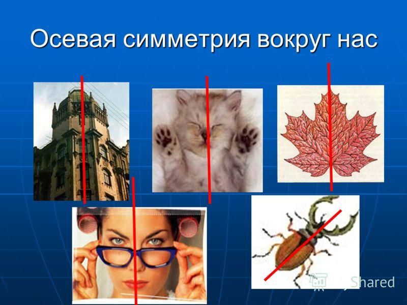 Осевая симметрия вокруг нас