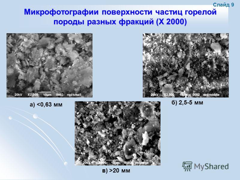 Микрофотографии поверхности частиц горелой породы разных фракций (X 2000) а) 20 мм Слайд 9