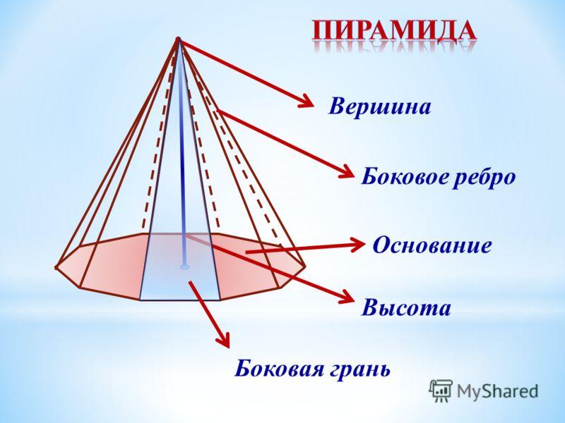 Вершина Боковое ребро Основание Высота Боковая грань