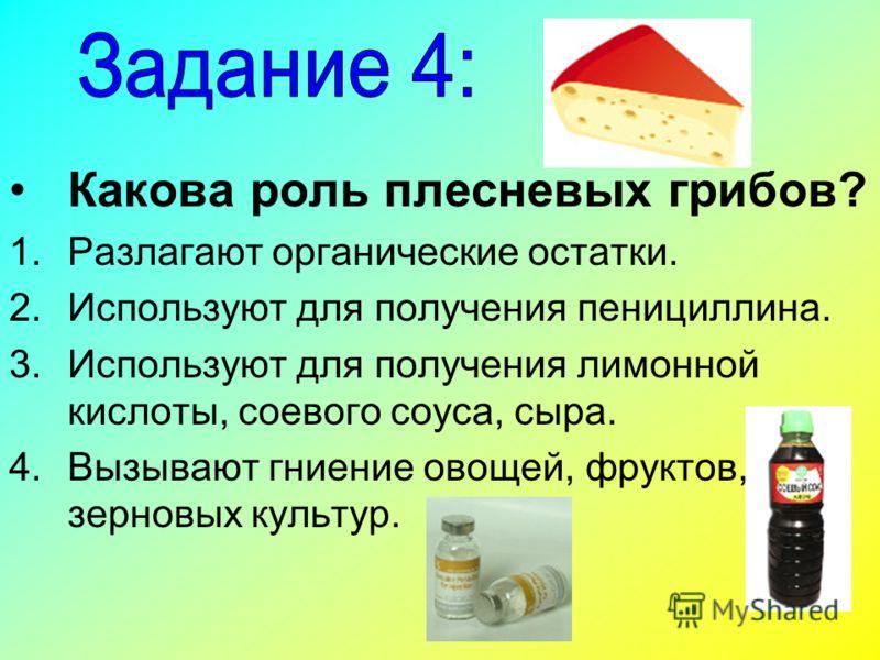 Какова роль плесневых грибов? 1.Разлагают органические остатки. 2.Используют для получения пенициллина. 3.Используют для получения лимонной кислоты, соевого соуса, сыра. 4.Вызывают гниение овощей, фруктов, зерновых культур.