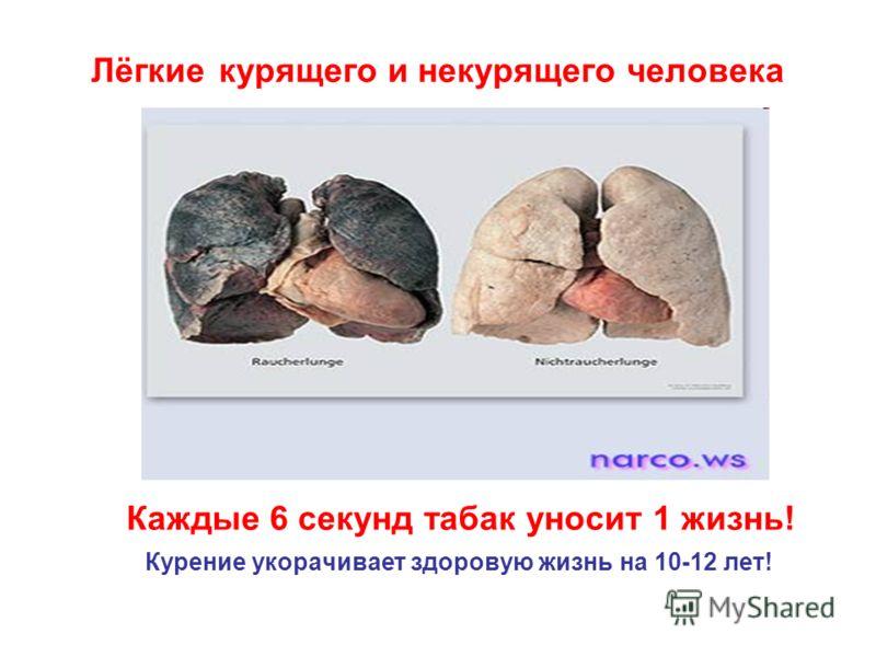 Каждые 6 секунд табак уносит 1 жизнь! Курение укорачивает здоровую жизнь на 10-12 лет! Лёгкие курящего и некурящего человека