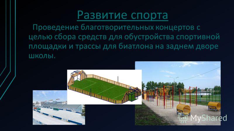 Развитие спорта Проведение благотворительных концертов с целью сбора средств для обустройства спортивной площадки и трассы для биатлона на заднем дворе школы.