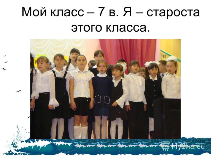 Мой класс – 7 в. Я – староста этого класса.