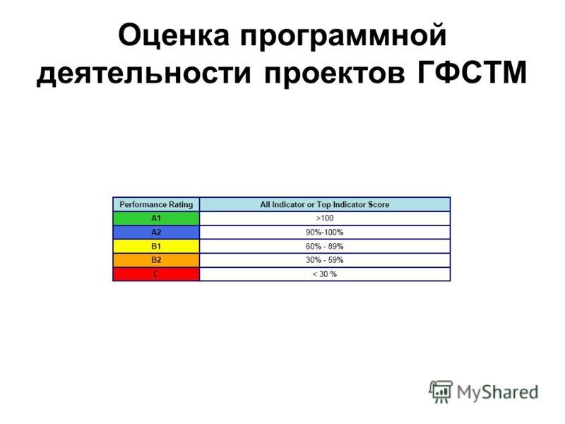 Оценка программной деятельности проектов ГФСТМ