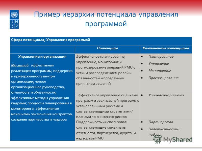 Пример иерархии потенциала управления программой Сфера потенциала; Управление программой ПотенциалКомпоненты потенциала Управление и организация Масштаб: эффективная реализация программы; поддержка и приверженность внутри организации; четкое организа
