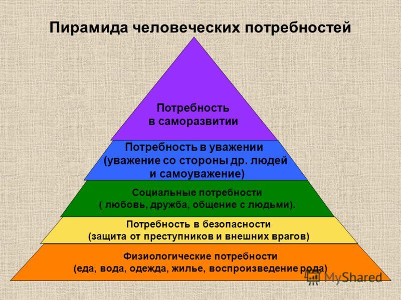 Пирамида человеческих потребностей Физиологические потребности (еда, вода, одежда, жилье, воспроизведение рода) Потребность в безопасности (защита от преступников и внешних врагов) Социальные потребности ( любовь, дружба, общение с людьми). Потребнос