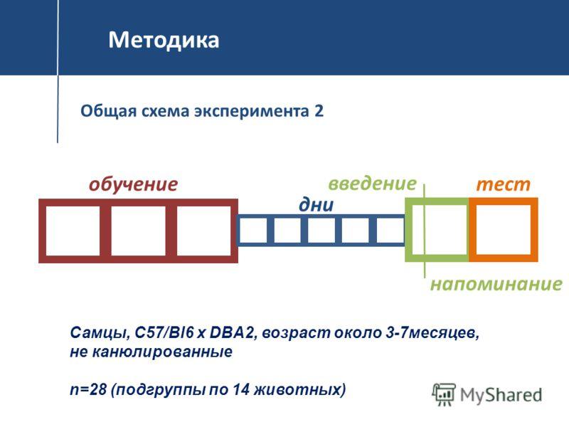 Методика Общая схема эксперимента 2 Самцы, С57/Bl6 x DBA2, возраст около 3-7месяцев, не канюлированные n=28 (подгруппы по 14 животных) обучение дни введение напоминание тест