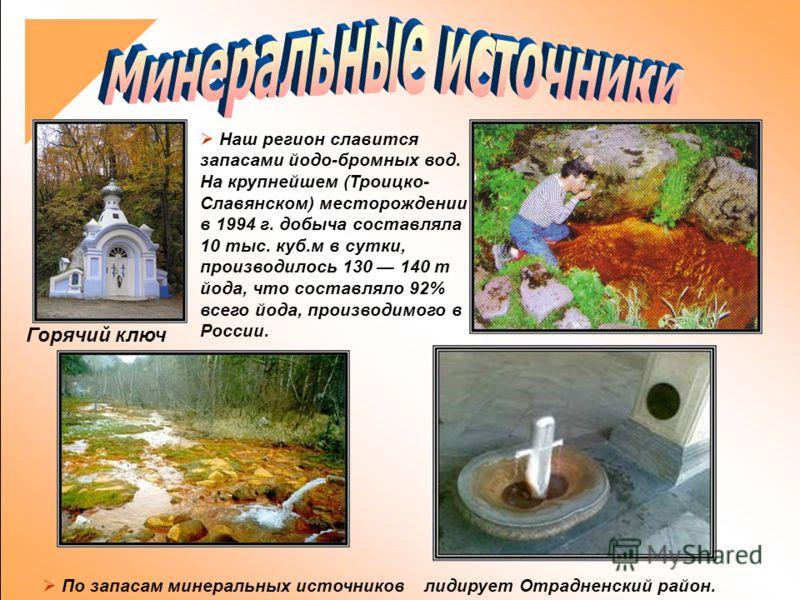 Наш регион славится запасами йодо-бромных вод. На крупнейшем (Троицко- Славянском) месторождении в 1994 г. добыча составляла 10 тыс. куб.м в сутки, производилось 130 140 т йода, что составляло 92% всего йода, производимого в России. По запасам минера