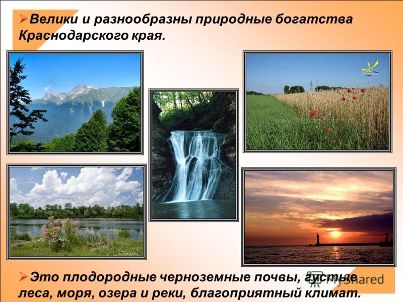 Велики и разнообразны природные богатства Краснодарского края. Это плодородные черноземные почвы, густые леса, моря, озера и реки, благоприятный климат.