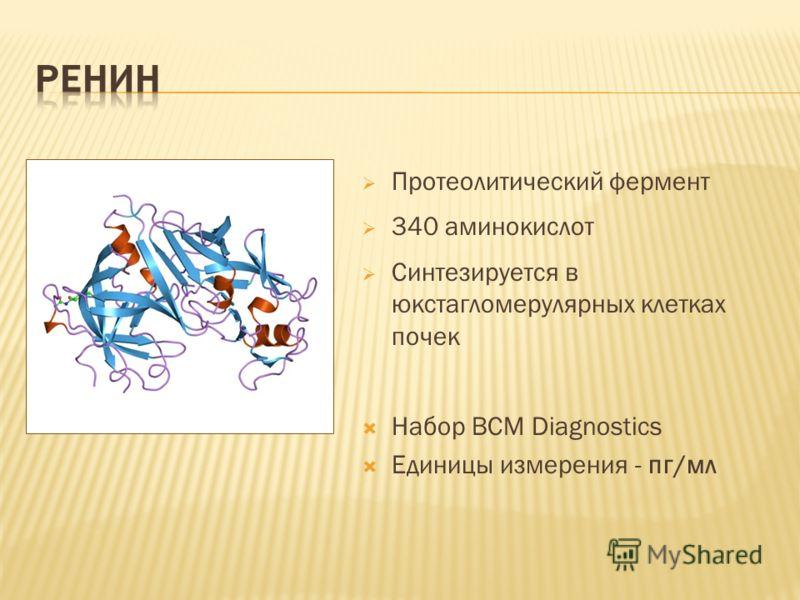 Протеолитический фермент 340 аминокислот Синтезируется в юкстагломерулярных клетках почек Набор BCM Diagnostics Единицы измерения - пг/мл