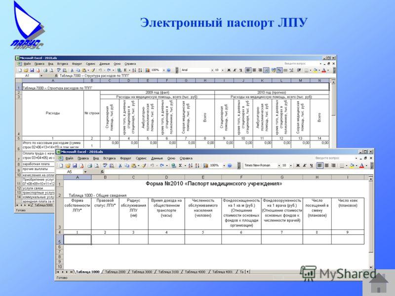 Электронный паспорт ЛПУ