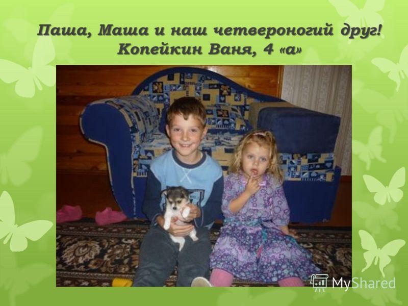 Паша, Маша и наш четвероногий друг! Копейкин Ваня, 4 «а»