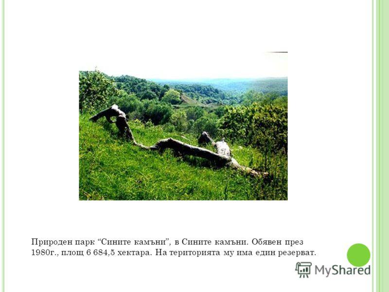 Природен парк Сините камъни, в Сините камъни. Обявен през 1980г., площ 6 684,5 хектара. На територията му има един резерват.