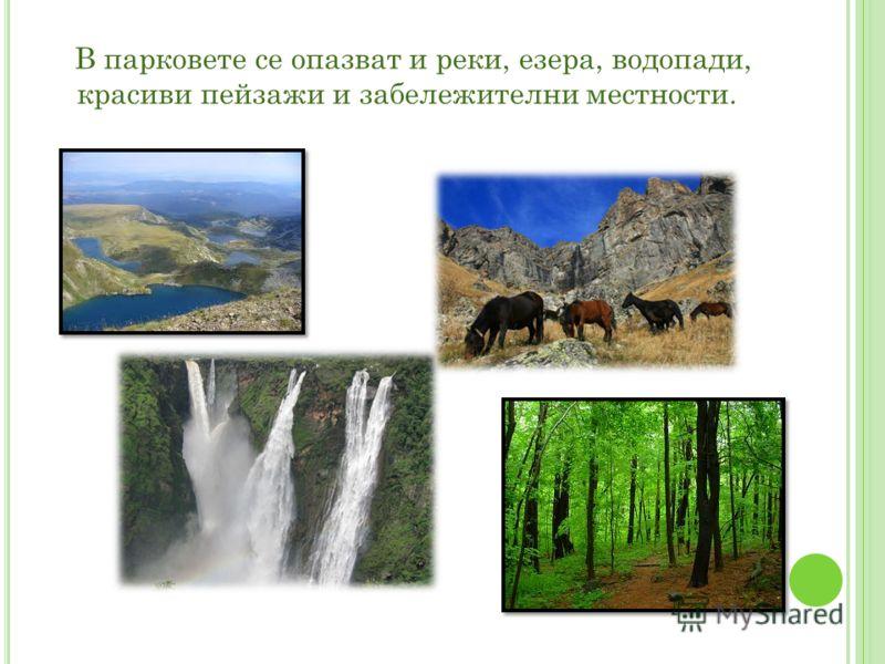В парковете се опазват и реки, езера, водопади, красиви пейзажи и забележителни местности.