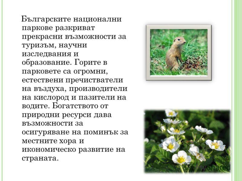 Българските национални паркове разкриват прекрасни възможности за туризъм, научни изследвания и образование. Горите в парковете са огромни, естествени пречистватели на въздуха, производители на кислород и пазители на водите. Богатството от природни р
