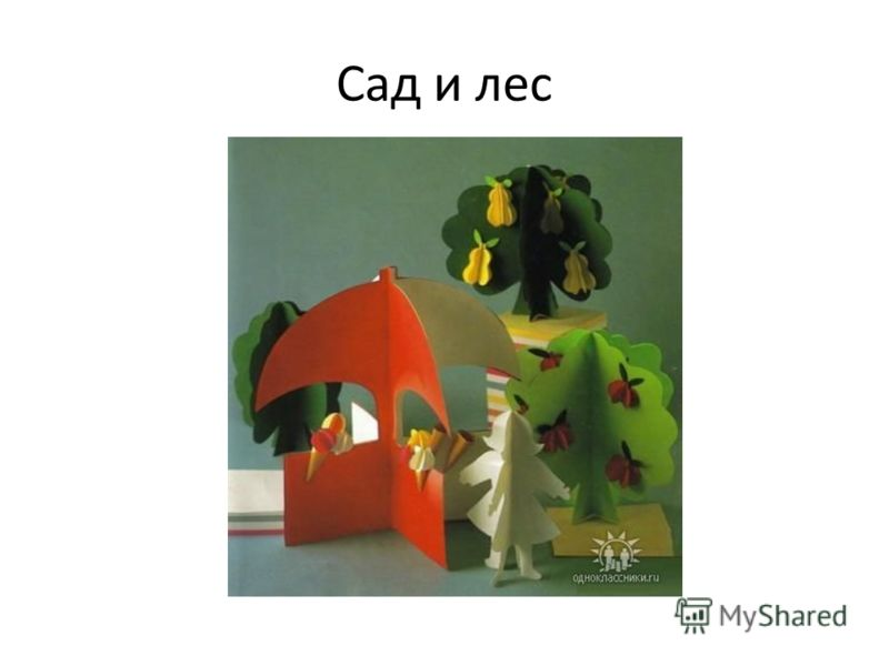 Сад и лес