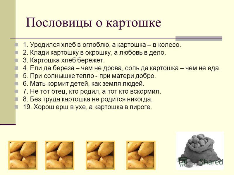 Пословицы о картошке 1. Уродился хлеб в оглоблю, а картошка – в колесо. 2. Клади картошку в окрошку, а любовь в дело. 3. Картошка хлеб бережет. 4. Ели да береза – чем не дрова, соль да картошка – чем не еда. 5. При солнышке тепло - при матери добро.