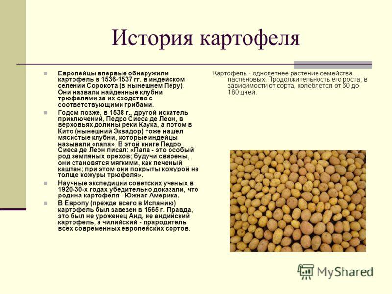 История картофеля Европейцы впервые обнаружили картофель в 1536-1537 гг. в индейском селении Сорокота (в нынешнем Перу). Они назвали найденные клубни трюфелями за их сходство с соответствующими грибами. Годом позже, в 1538 г., другой искатель приключ