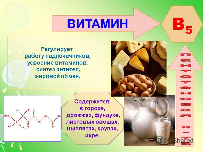 ВИТАМИН B5B5 Регулирует работу надпочечников, усвоение витаминов, синтез антител, жировой обмен. Содержится: в горохе, дрожжах, фундуке, листовых овощах, цыплятах, крупах, икре.