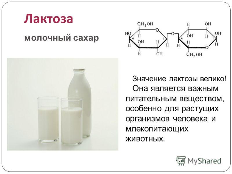 Лактоза молочный сахар Значение лактозы велико! Она является важным питательным веществом, особенно для растущих организмов человека и млекопитающих животных.