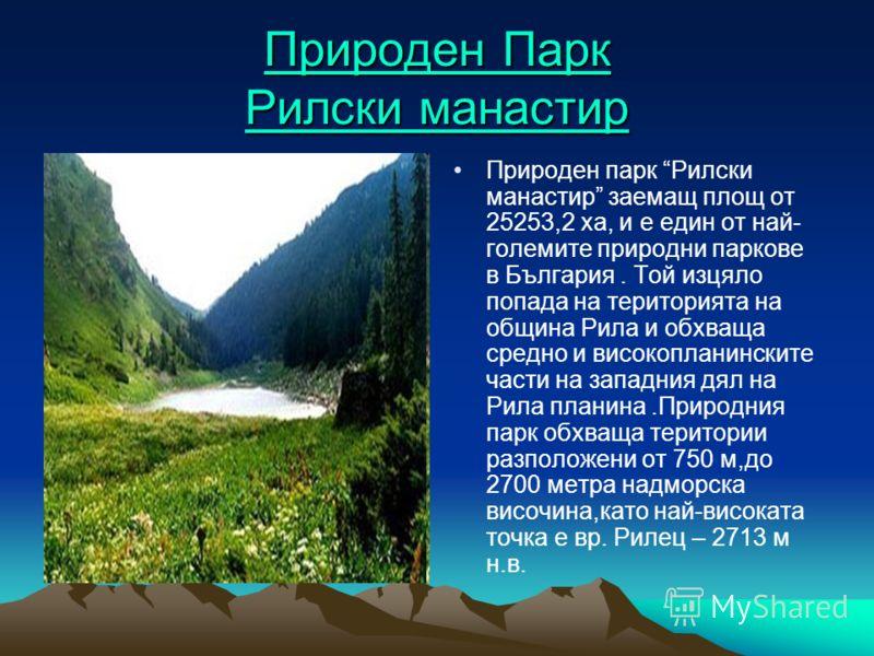 Природен Парк Рилски манастир Природен Парк Рилски манастир Природен парк Рилски манастир заемащ площ от 25253,2 ха, и е един от най- големите природни паркове в България. Той изцяло попада на територията на община Рила и обхваща средно и високоплани