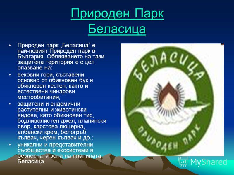 Природен Парк Беласица Природен Парк Беласица Природен парк Беласица е най-новият Природен парк в България. Обявяването на тази защитена територия е с цел опазване на: вековни гори, съставени основно от обикновен бук и обикновен кестен, както и естес