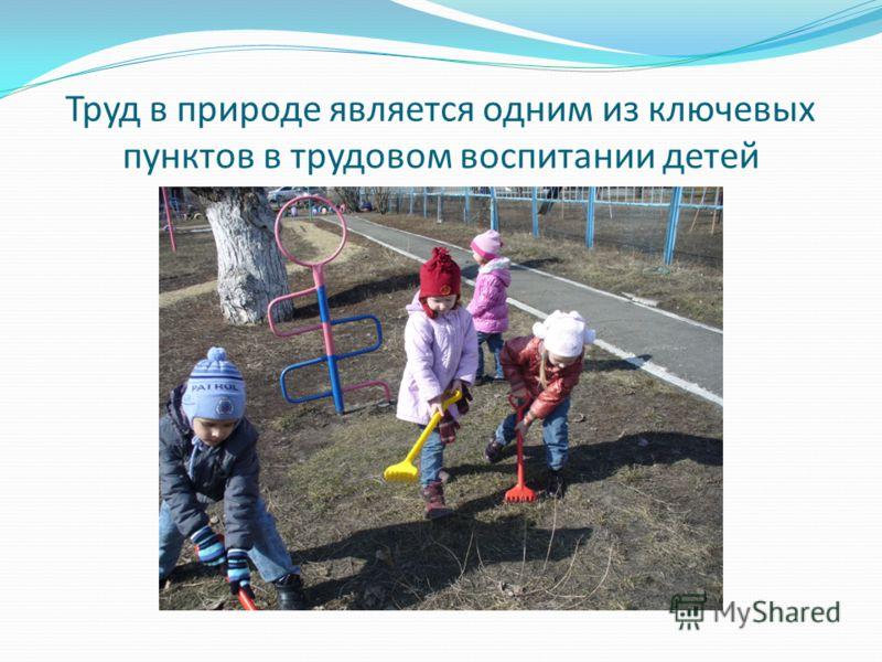 Труд в природе является одним из ключевых пунктов в трудовом воспитании детей
