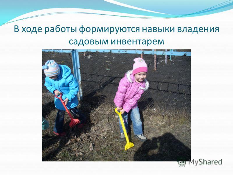 В ходе работы формируются навыки владения садовым инвентарем