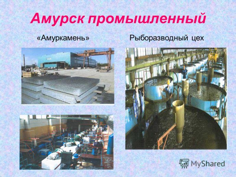 Амурск промышленный «Амуркамень» Рыборазводный цех