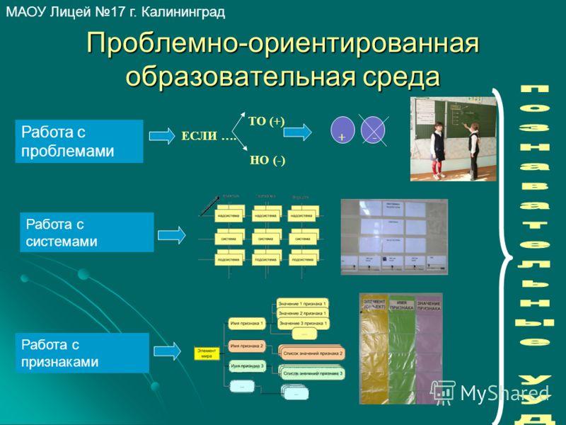 МАОУ Лицей 17 г. Калининград Проблемно-ориентированная образовательная среда Работа с признаками Работа с системами Работа с проблемами ЕСЛИ …. ТО (+) НО (-) +-