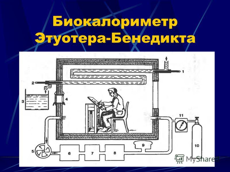 Биокалориметр Этуотера-Бенедикта