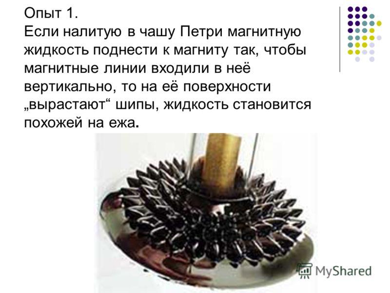Опыт 1. Если налитую в чашу Петри магнитную жидкость поднести к магниту так, чтобы магнитные линии входили в неё вертикально, то на её поверхности вырастают шипы, жидкость становится похожей на ежа.