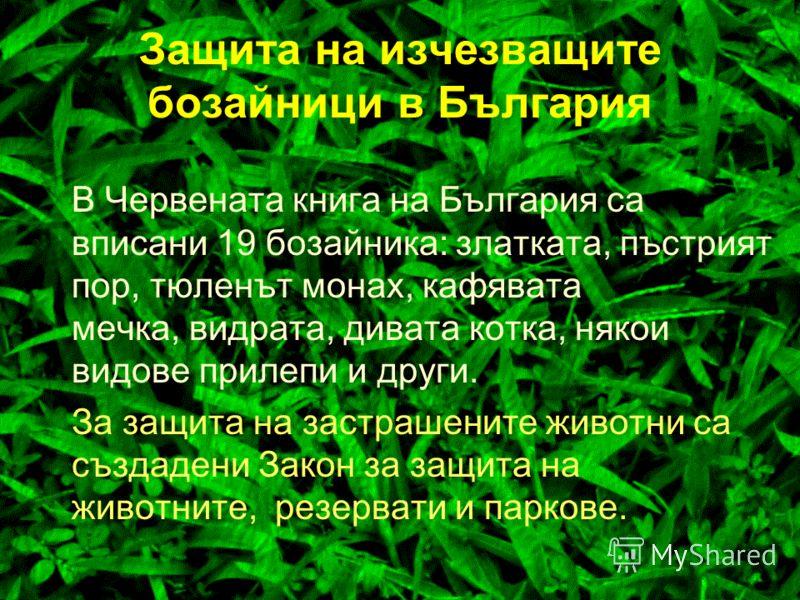 Защита на изчезващите бозайници в България Човекът със своята дейност е внесъл дълбоки изменения в разпространението на животните. За животинските видове се забраняват: всички форми на умишлено улавяне или убиване на екземпляри с каквито и да е уреди